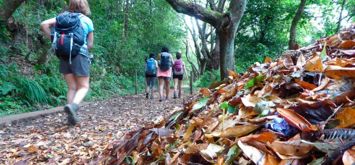 Descubre los Cuadernos de viajes de las actividades de Nos Vamos de Aventura en su blog