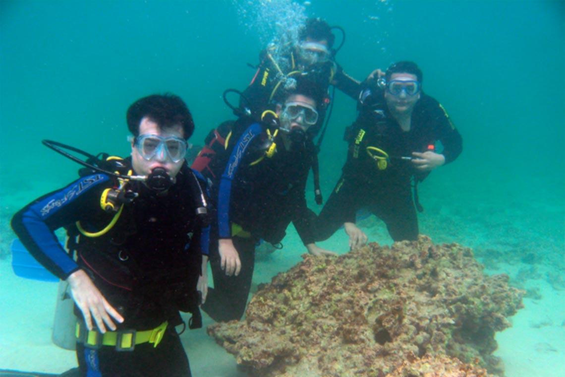 Descubre los mejores viajes de buceo con los que conocer a gente