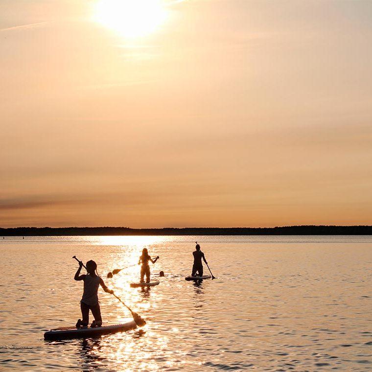 Disfruta sobre el agua haciendo: Surf, Windsurf o PadelSurf